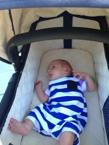Amy W's baby 6-21-2014 basket